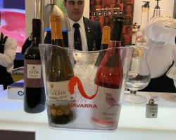 I_Campeonato_Mixology_Wine (5)